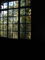Dark Window 2 by HauntingVisionsStock