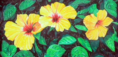 Yellow Hibiscus by leilehua74