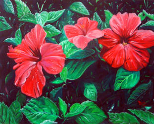 Red Hibiscus by leilehua74