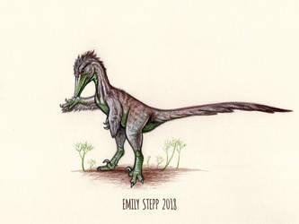 DrawDinovember Day 11 Austroraptor by EmilyStepp