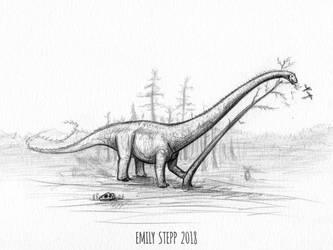 DrawDinovember Day 24 Barosaurus by EmilyStepp