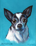 Chihuahua Tribute Portrait Painting Commission by EmilyStepp