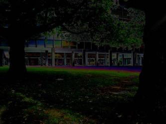 Rainbow Meadow by Psychokugel