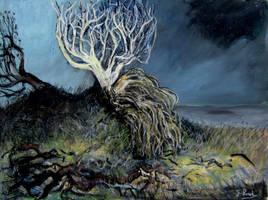 broken tree by glenox66