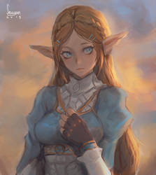 Zelda by Seuyan