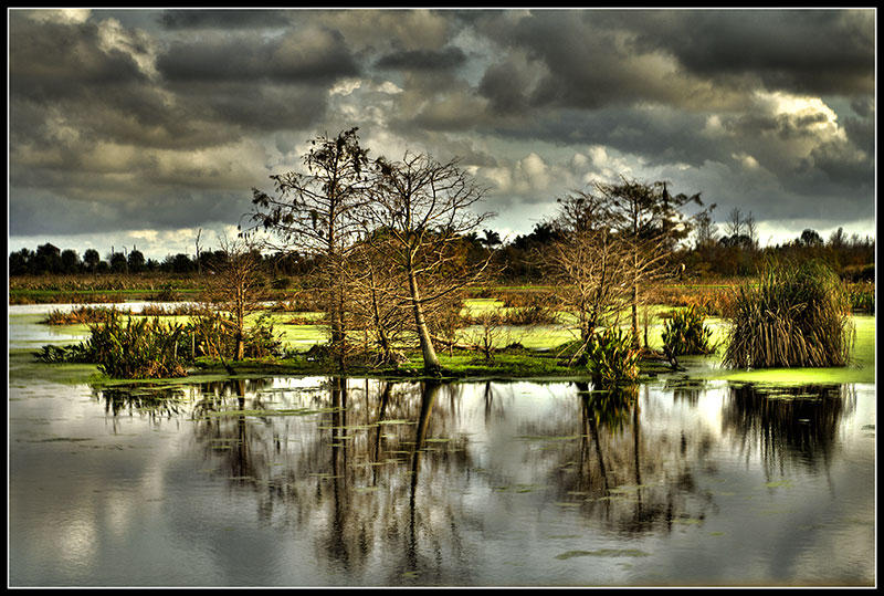 Green Cay Wetlands by QNetX