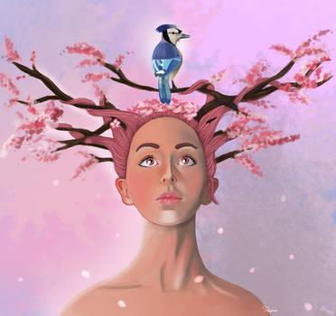 Cherry Blossom by Sofia-Sousa