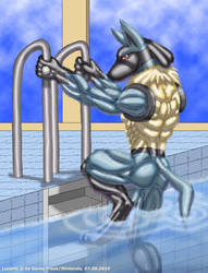 Lucario swims by ginkaze