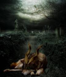 The Misty Center Wolves ~Divergent~ by Haeni