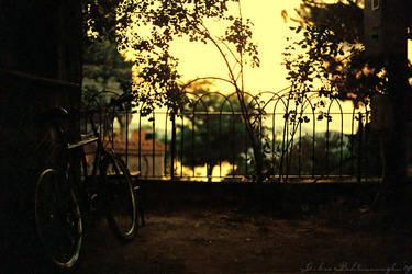 broken bicycles II by Anahita
