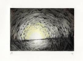 The souls flying at the marsh  (print version) by NikiAndo
