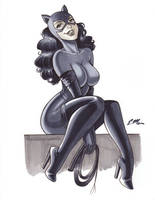 90s Catwoman Commission by em-scribbles