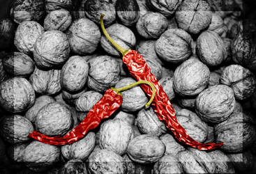 Red pepper on bed of walnuts by DjeeZ