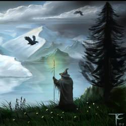 Odin Watching (detail) by TotCzechowicz