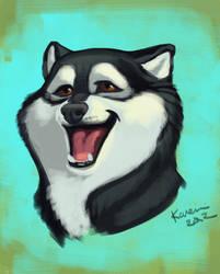Husky Smile by kayjkay
