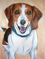 Harvey the Dog by jamysketches