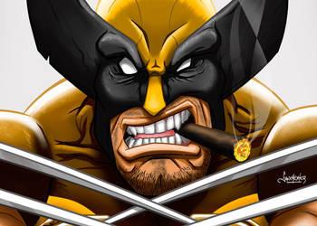 Wolverine - Close up by sanchexter