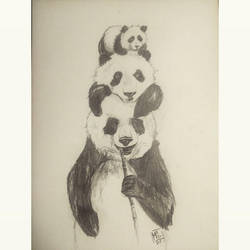 Some Pandas by michi9911