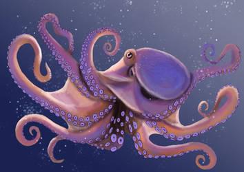 Octopus by SapphireMinx