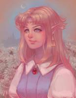 Princess Zelda by Aurellien