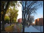 changing seasons by cyndrella
