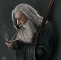 Gandalf by zkorejo
