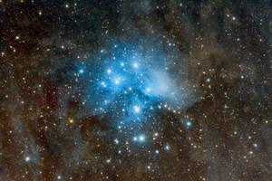 The Pleiades (M45) in Taurus by octane2