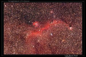 The Seagull Nebula by octane2