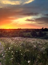 Winona Hillside at evening by TutorVeritatis