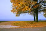 Autumn lake landscape by photohouse