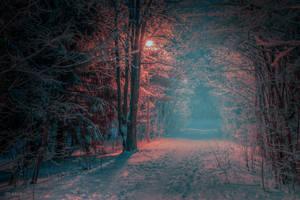 Misty Blue by m-eralp