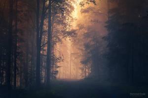 Solitude II by m-eralp