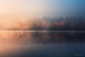 Afternoon fog by m-eralp