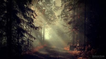 Mirkwood (warm touch) by m-eralp