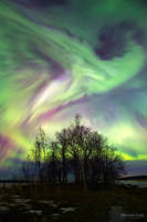 Aurora 03.15 by m-eralp