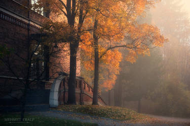 October morning by m-eralp