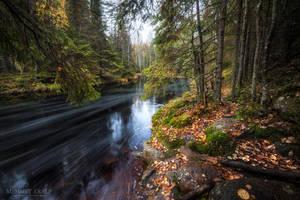 Autumn by m-eralp