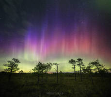 Aurora Shower by m-eralp