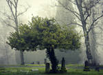 Woodbine Cemetery 2 by Lillith8810