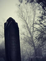 Woodbine Cemetery 5 by Lillith8810