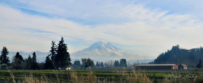 Mt. Rainier by Lillith8810