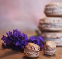 Light Purple Summer by Isalovesphotography