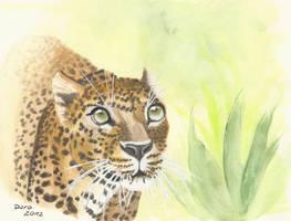 Jungle Leopard by keksimtee