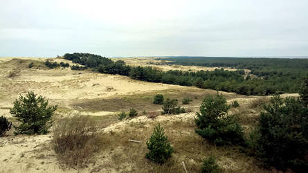 Curonian Spit :October: 7 by J-dono