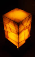 Unexpected Guest - 3d printed lamp by seanpt