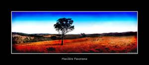 Manildra Panorama by InsaneShane