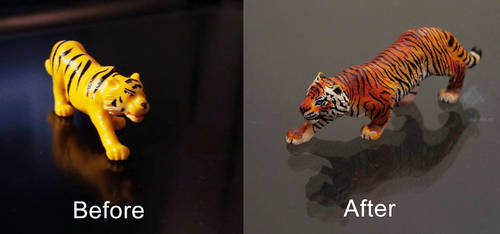 Tiger Makeover! by aquaticmine