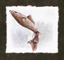 Jumping Fish by matildarose
