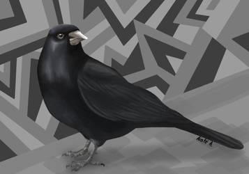 Crow by Aistecool