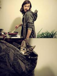 hood cat by Asilwen